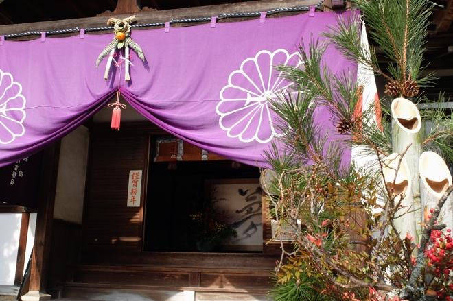 FUJI4609.jpg
