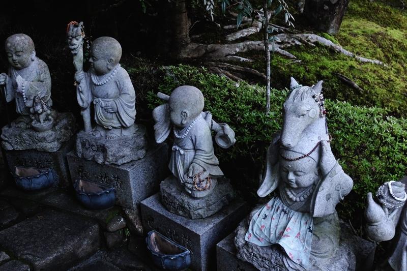 FUJI8501.jpg